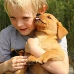 Familias con perro, niños más felices