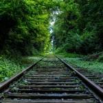 """Vías verdes para combatir el """"déficit de naturaleza"""" de la infancia"""